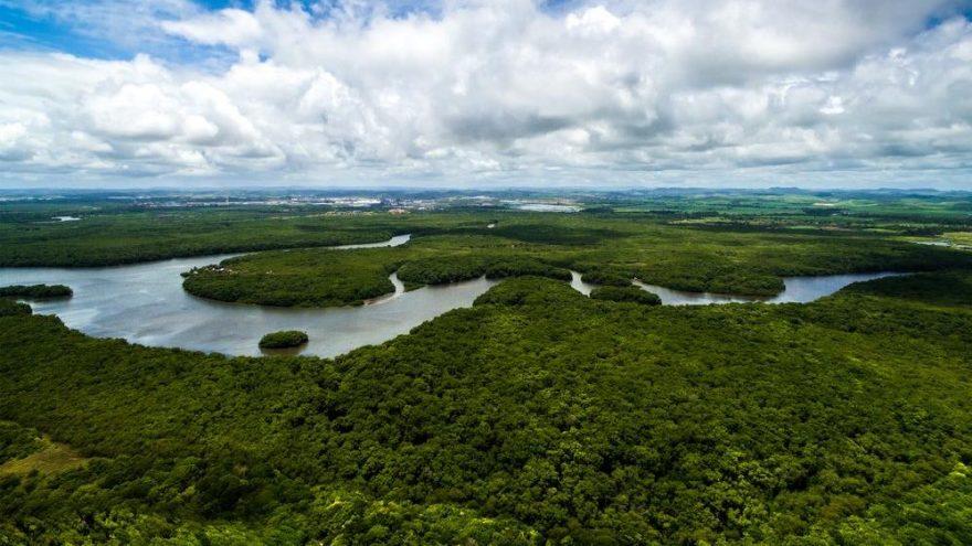'Amazon yerlileri tarihin en ağır saldırısı altında'