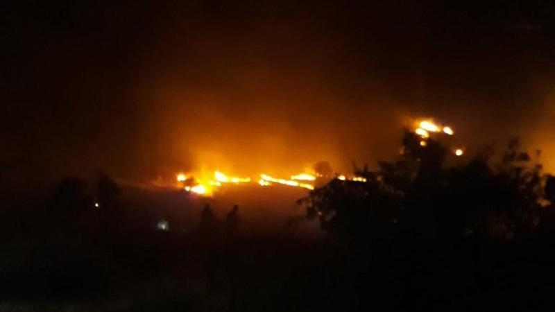 Elazığ'da 700 dönüm ekili ve ormanlık alan kül oldu