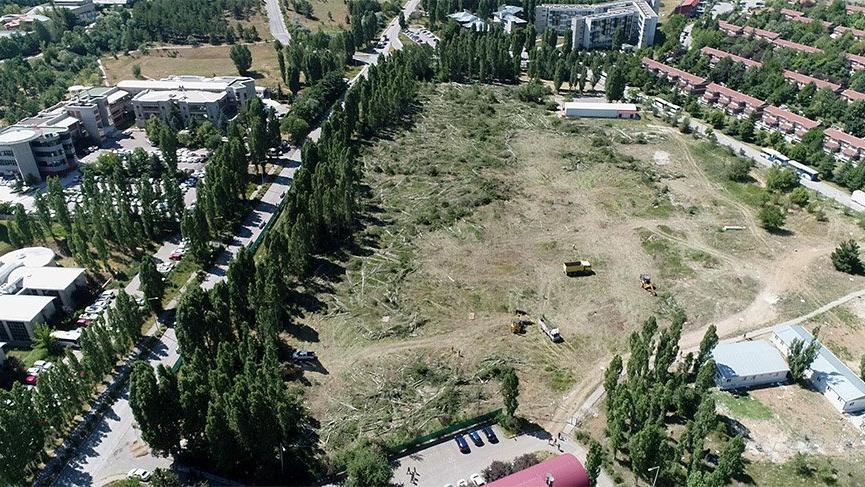 ODTÜ'deki ağaç katliamı havadan görüntülendi!