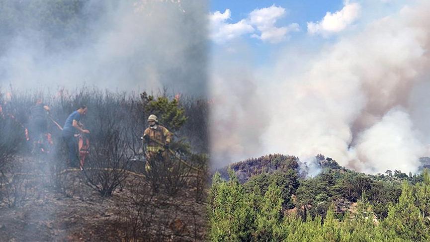 İstanbul ve Muğla'da korkutan orman yangını!