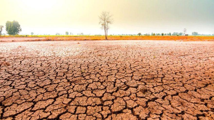 Kritik uyarı: 2050 yılında ısı 3,5 ila 4,7 derece artacak