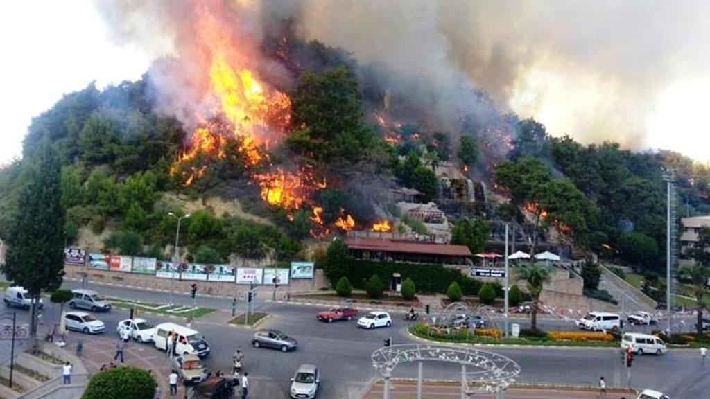 Ormanlar rant için mi yakılıyor?