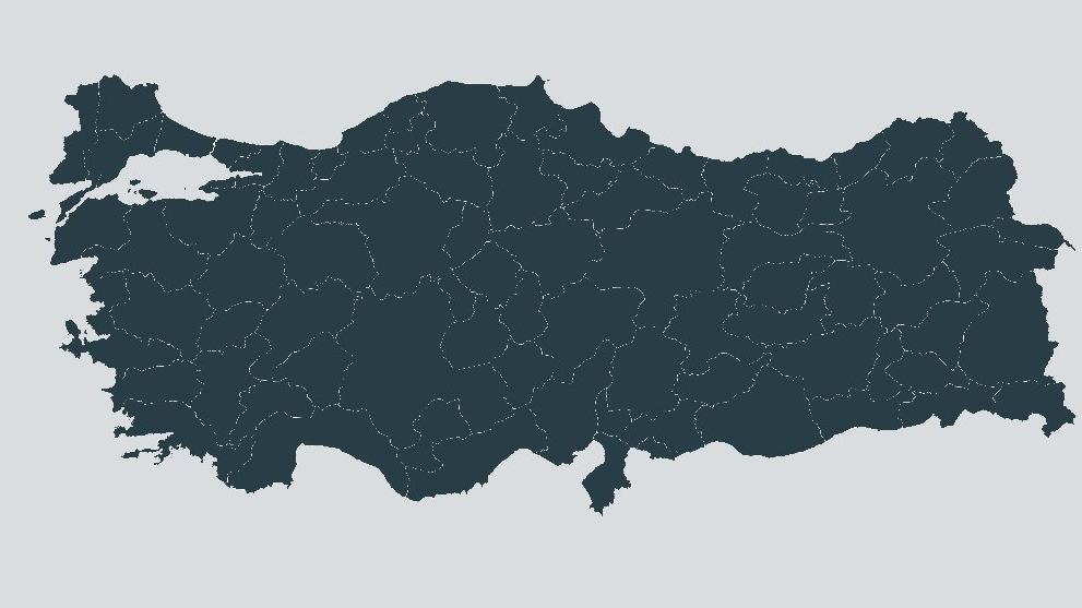 Türkiye'de kaçak içkinin oranı ne? Yaşamını yitirenlerin sayısı gün geçtikçe artıyor