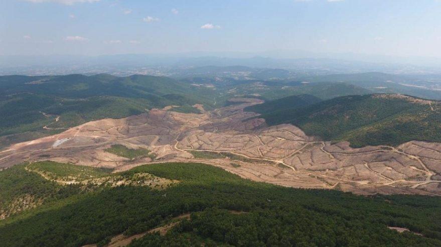 Son dakika.. Tarım ve Orman Bakanlığından Kazdağları açıklaması