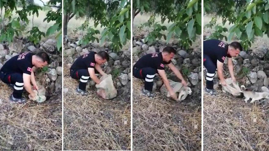 Yavru köpek, ağzı bağlı çuvalla yollar kenarına bırakılmış