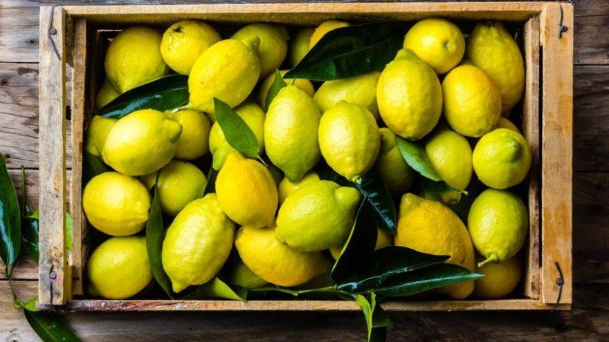 Limon kabuğunun 6 faydası
