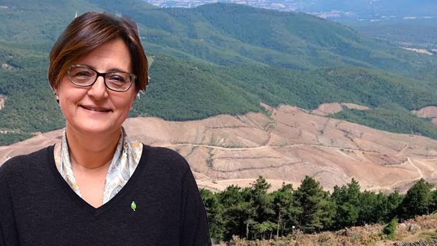 """TEMA'dan Kaz Dağları uyarısı: """"Siyaset üstü bir durumdur"""""""