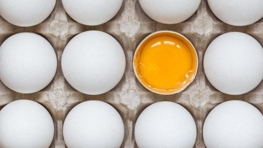 Yumurtanın faydaları: Yumurta vücudumuzda neye iyi gelir? İşte yumurtanın vitaminleri…