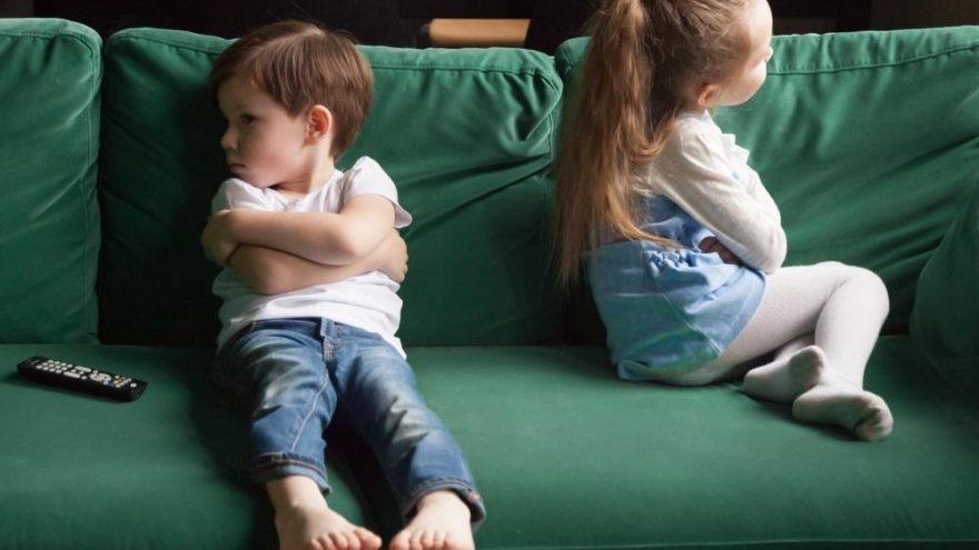 Kardeş kıskançlığı nasıl önlenir? Kardeş kıskançlığını önelemek için yapılacaklar…