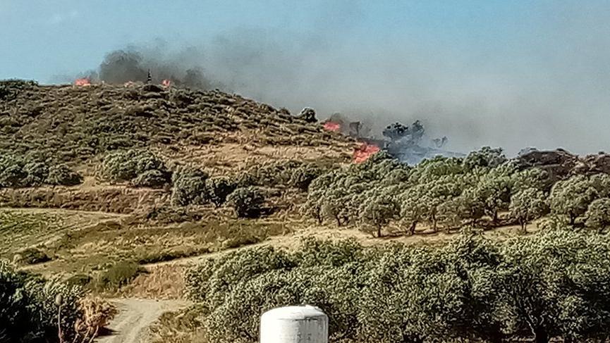 Hatay'da korkutan orman yangını!
