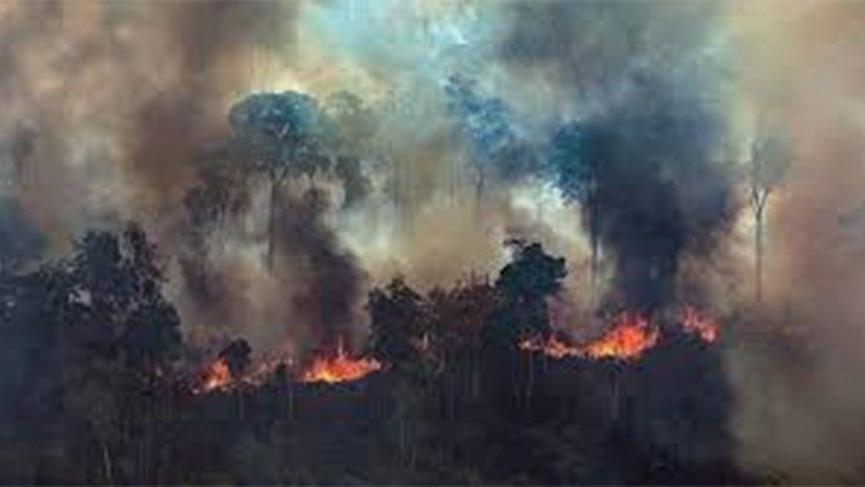 Dünyanın 'ikinci akciğerleri' de yanıyor