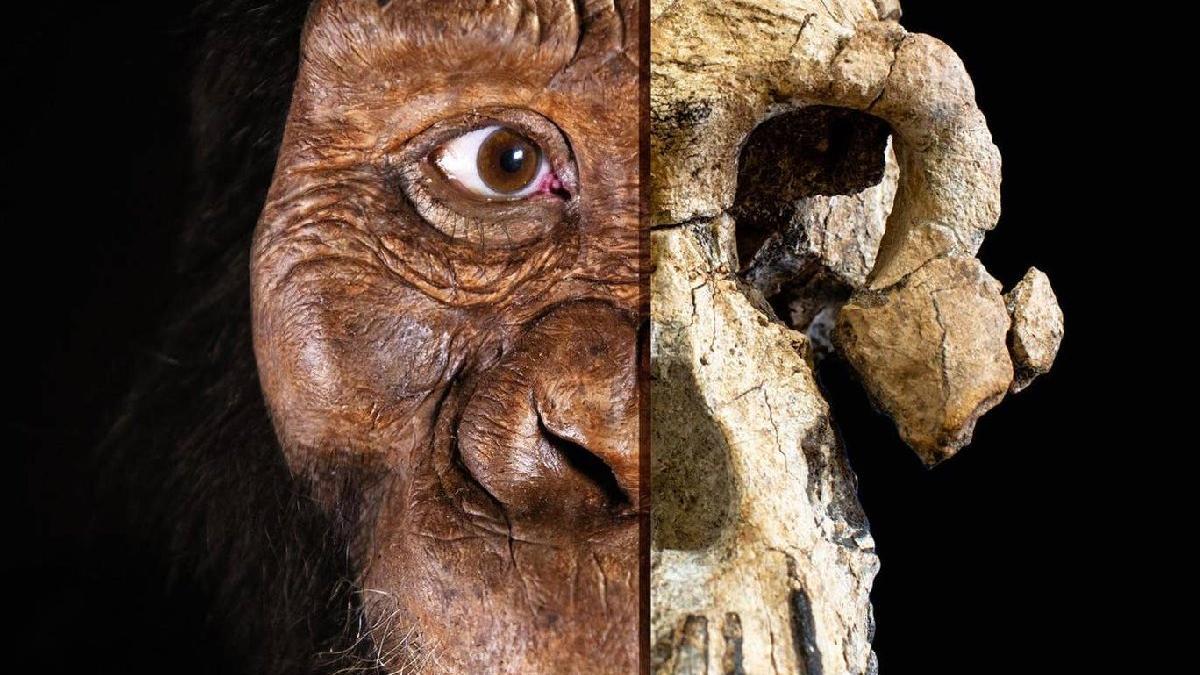 Bilim insanları yıllar süren araştırmayı tamamladı: İşte ilk insan