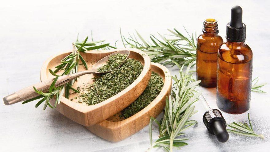 Biberiyenin faydaları: Biberiyenin vitaminleri ve yararları…