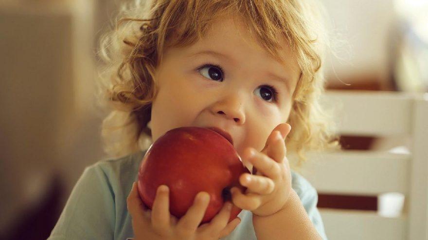 Çocuklara nasıl meyve yedirilir? Çocuklara meyve sevdirme yöntemleri