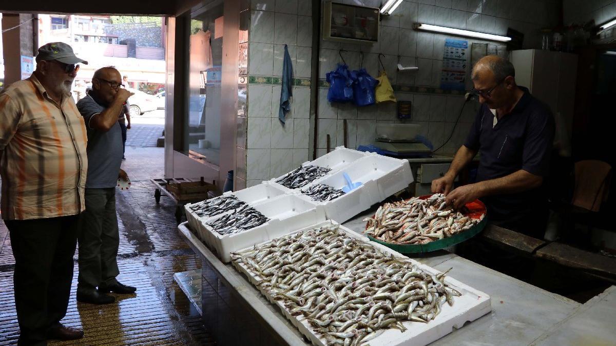Balıkçılar sezona hayal kırıklığıyla başladı: Palamut yok