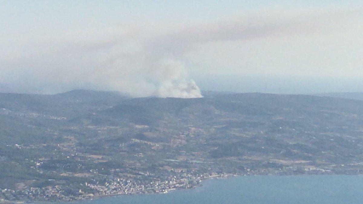 Son dakika... İzmir'de panik yaratan yangın!