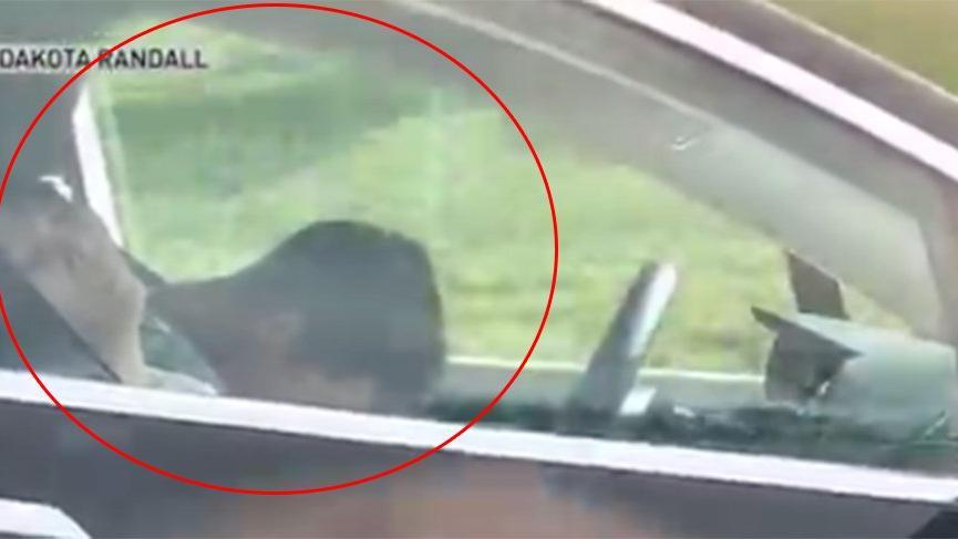 Seyir halindeki aracın sürücüsü ve yolcusu uyudu!