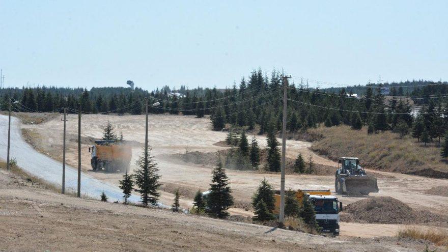 Güzergah değişirse on binlerce ağaç kesilmeyecek