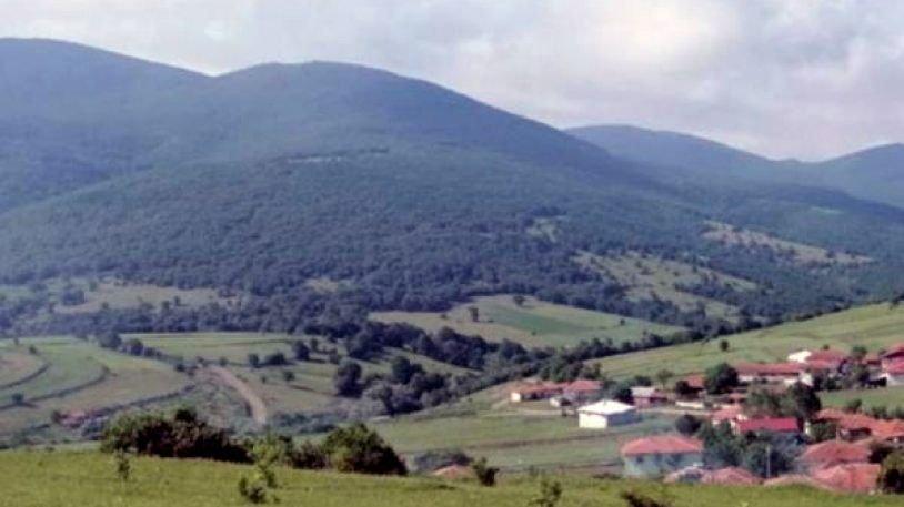 Ağaç katliamının yeni adresi Şahin Dağları