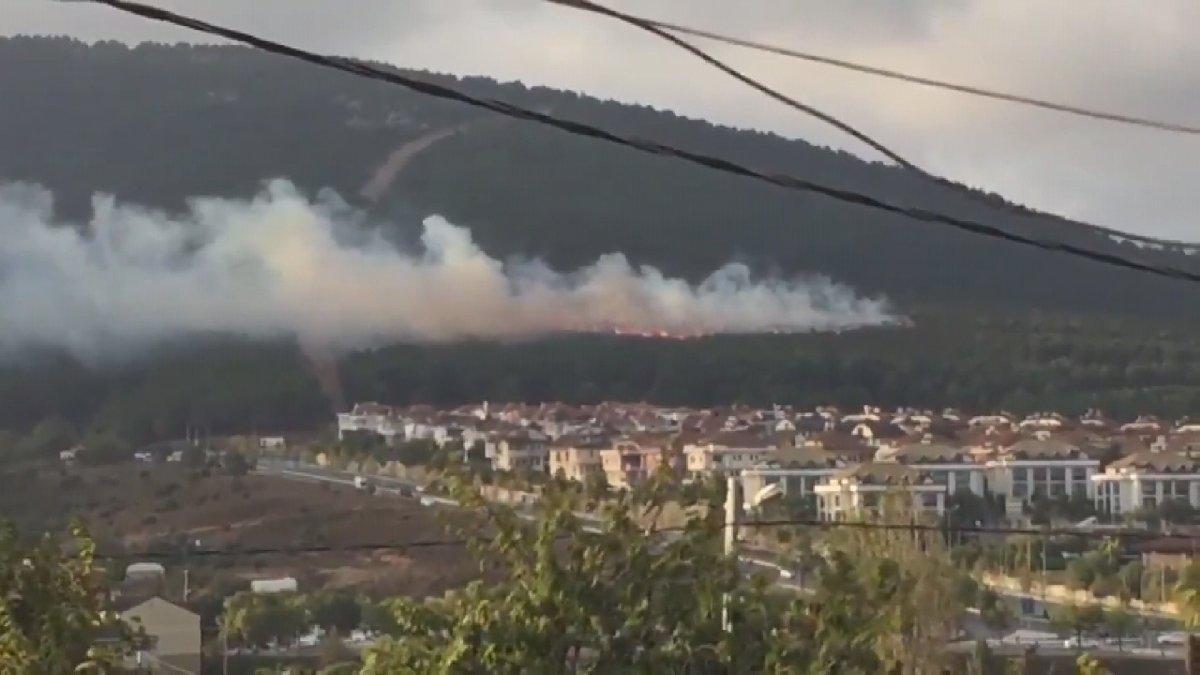 Son dakika... İstanbul'da şüpheli orman yangını!