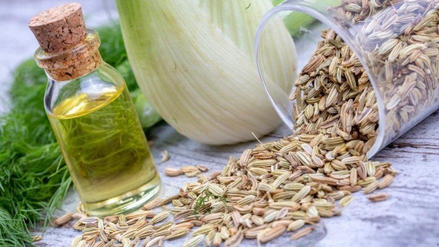 Rezene çayı kaç kalori? Rezene çayının besin değerleri ve kalorisi…