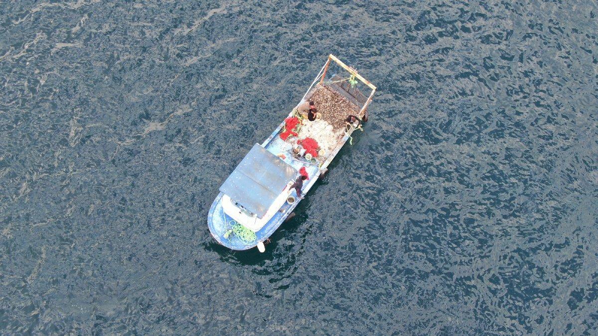 Boğaz'da kaçak midye avcılarına operasyon
