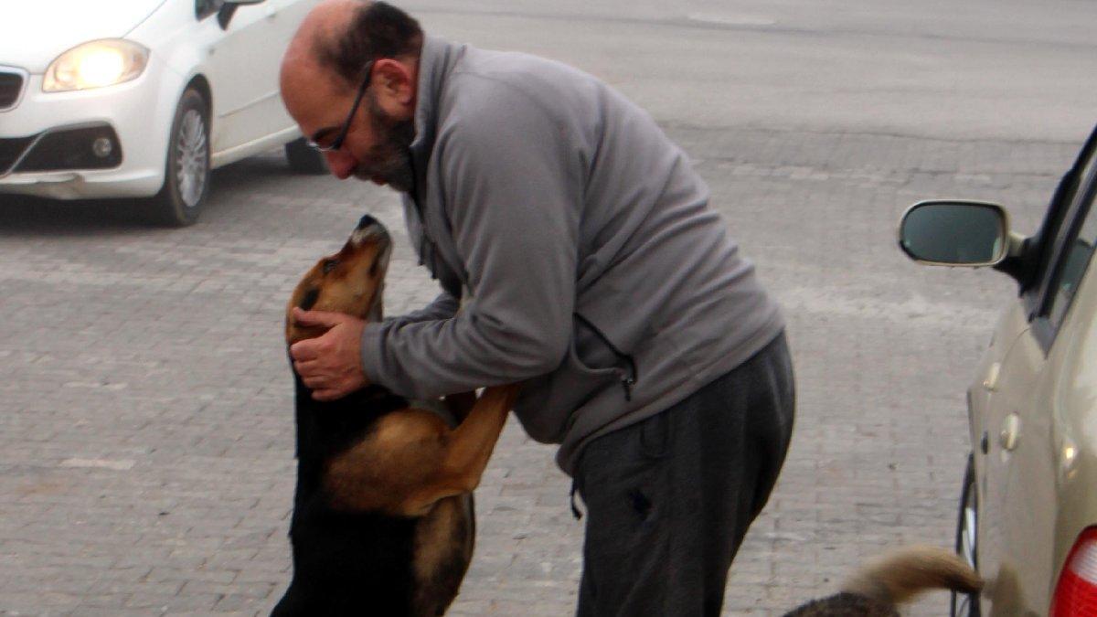 Her gün sokak hayvanlarını besliyor
