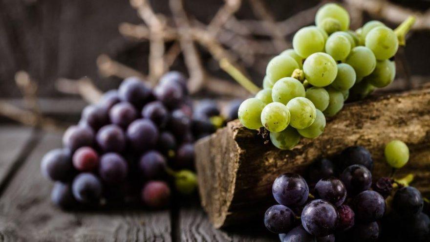 Üzüm kaç kalori? Üzümün besin değerleri ve kalorisi