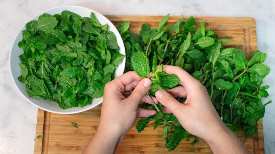 Nanenin faydaları: Nanenin içinde hangi vitaminler var?
