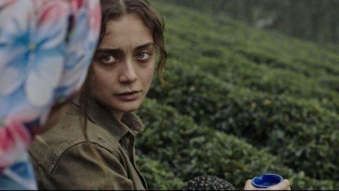 Frankfurt'ta 11 Türk filmi yarışıyor