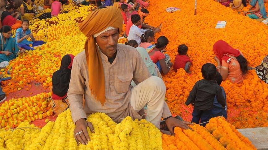 Hindistan'ın renkli yüzü: Çiçek pazarları