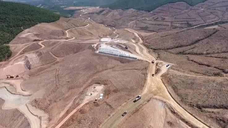 Kaz Dağları için korkunç rakam: 347 bin ağaç kesildi