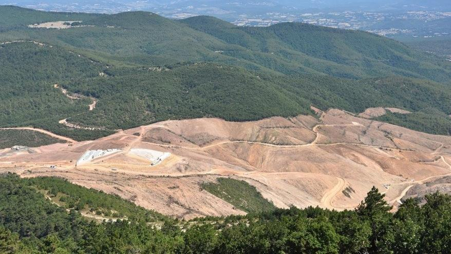 Kaz Dağları'nda 200 bin ağaç kesen şirket 2 bin 500 fidan dikti
