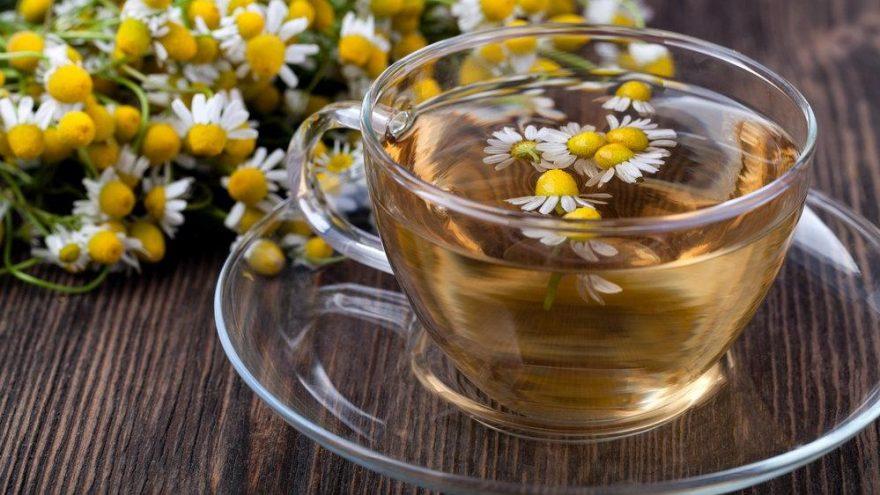 Papatya çayı kaç kalori? Papatya çayının besin değerleri ve kalorisi
