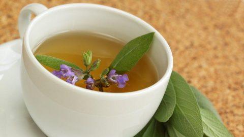 Ada çayı nasıl demlenir? Ada çayı zayıflatır mı?