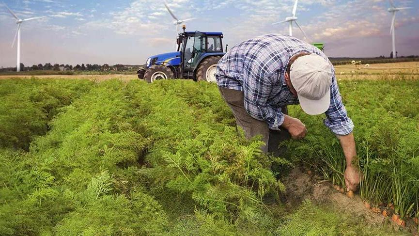 Çiftçinin hayali yine suya düştü