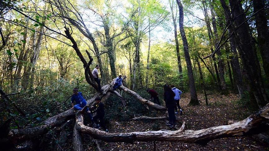 Doğa turizminin gözdesi Kırklareli sonbaharda görsel şölen sunuyor