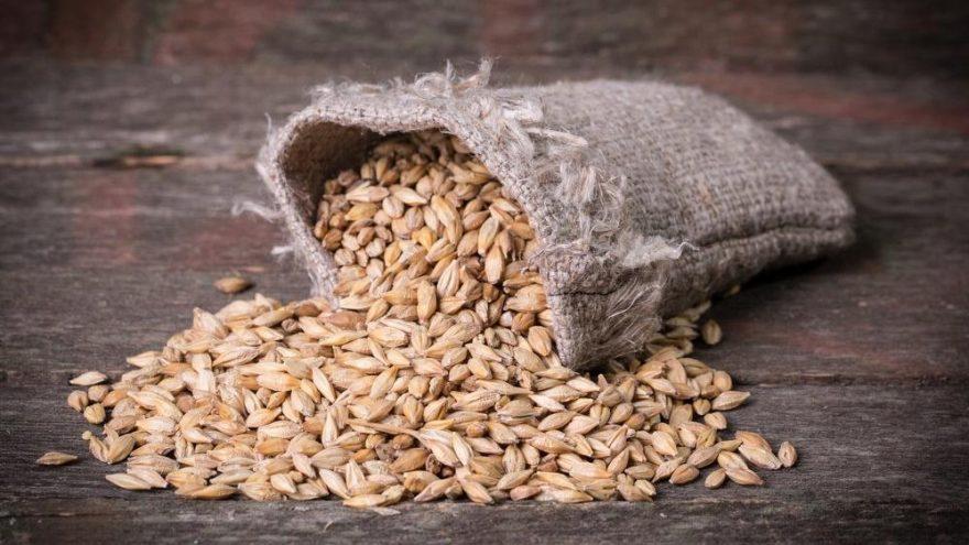 Arpa kaç kalori? Arpanın besin değerleri ve kalorisi…