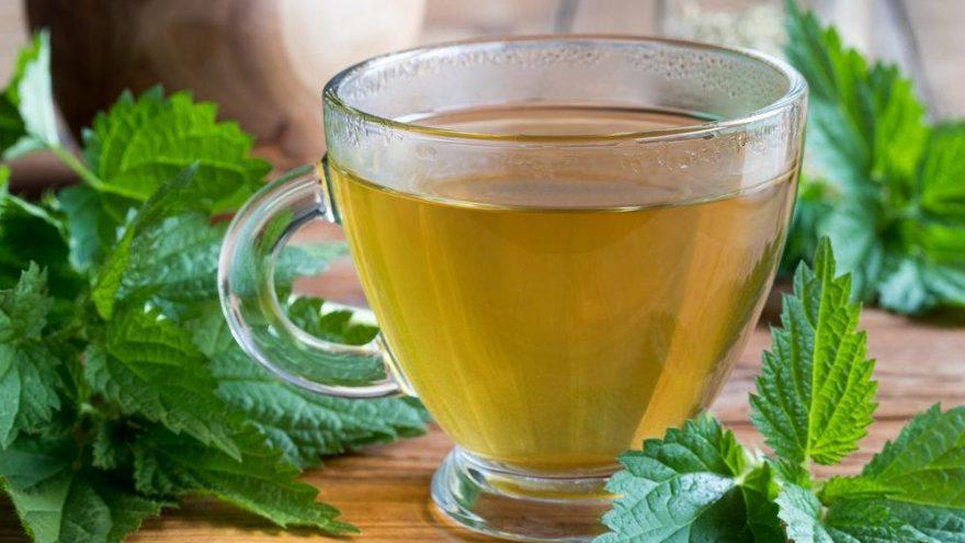 Isırgan otu çayı nasıl yapılır, kaç gün içilir? İşte ısırgan otu çayının etkileri…