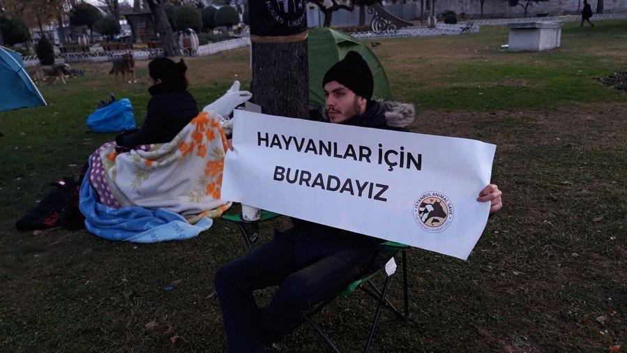 İBB önünde fayton protestosu! Çadırlarda sabahladılar