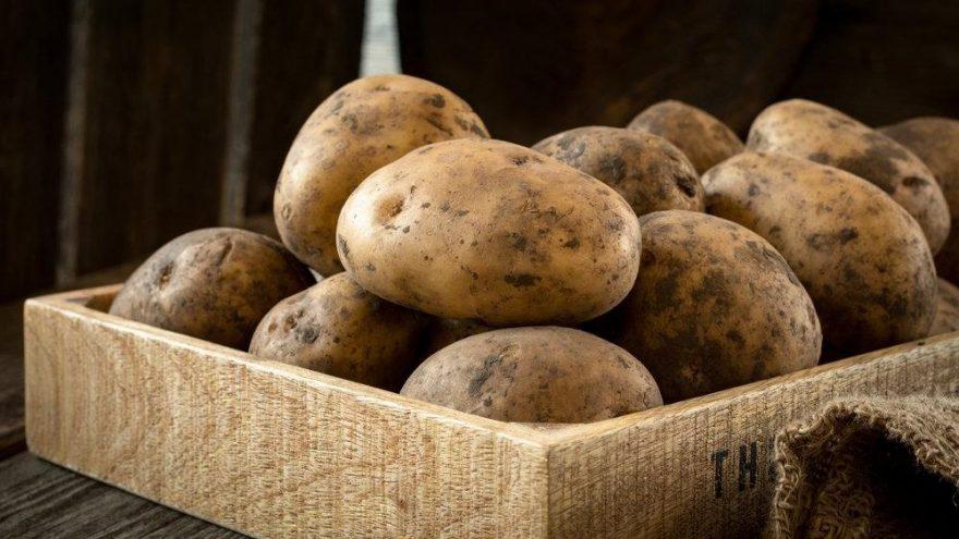 Patates neye iyi geliyor? Patatesin faydaları nelerdir?