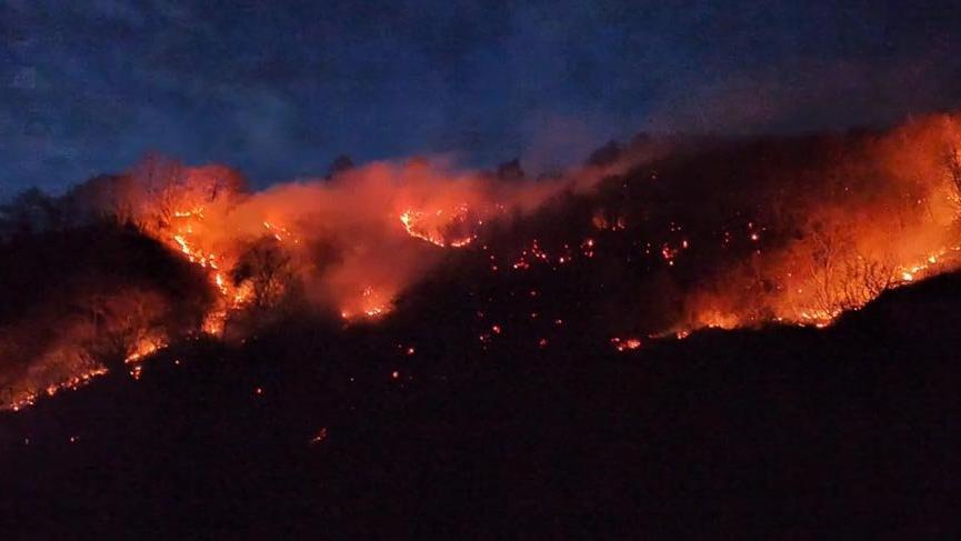 Son dakika… Karadeniz'de dört şehirde orman yangını