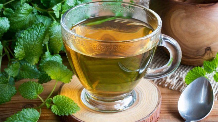 Melisa çayı nasıl demlenir, ne zaman içilir?
