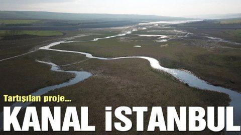 Kanal İstanbul'u bilim insanlarına sorduk… Dördüncü bölüm: Deniz canlıları