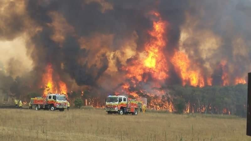 Avustralya'da yangın! Ordu göreve çağrıldı, 19.8 milyon arazi küle döndü
