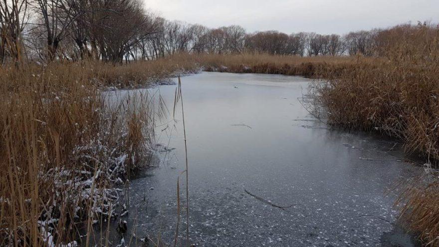 Sultan Sazlığı'ndaki göl soğuk havada buz tuttu