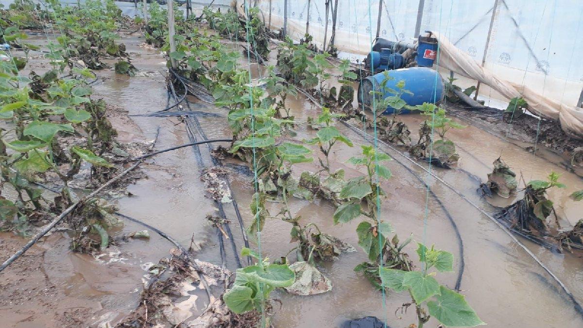 Antalya'da etkili olan yağışlar sebze ve meyve fiyatlarını artırabilir