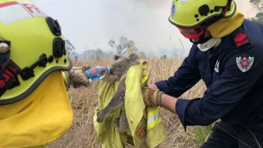 Avustralya'daki yangında son durum... NASA korkutan görüntüyü paylaştı