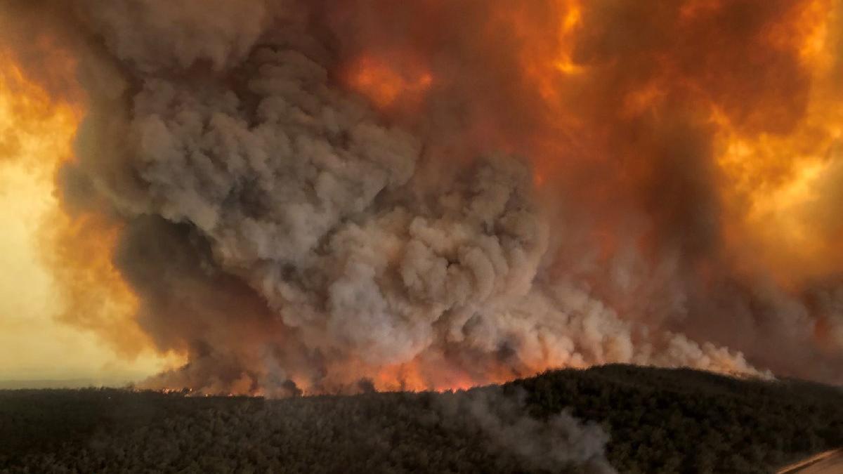 Avustralya yangınları için flaş iddia: Eğer doğruysa...