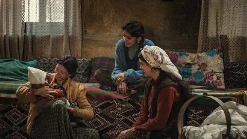 52. SİYAD Türkiye Sineması Ödülleri adayları belirlendi